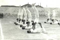 08---1966